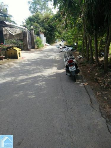 Đất+nhà kho CLN 10x30 mặt tiền Đường Phạm Thị Ban