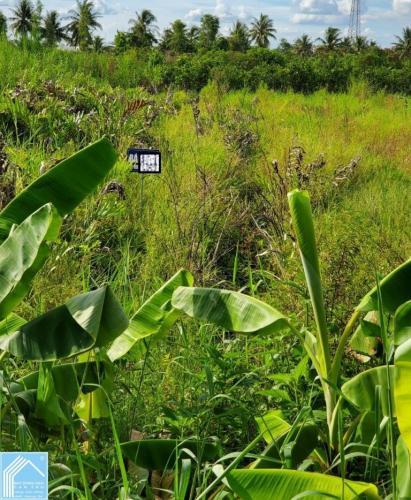 Đất nền mặt tiền 11x43 Lộ 12M đang thi công Cái Răng