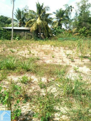 Đất 5x45 mặt tiền có thổ cư Tỉnh Lộ 923 gần ngã tư TL922