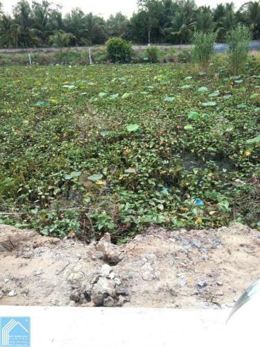 Đất 6x28 Lộ 4M gần chợ Giáo Dẫn Tỉnh Lộ 923